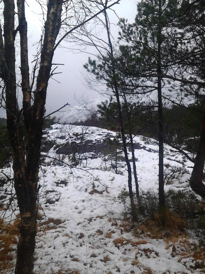Snøen før den regnet vekk ;)