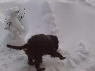 Sash uforsker snøhule i sterk vind :)
