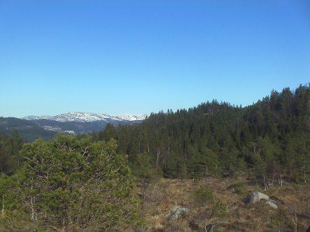 Våridyll oppe på fjellet