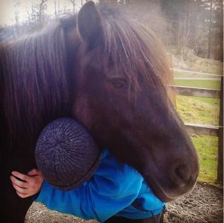 Hest og chill