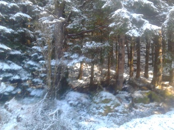 Vintertur mars 8