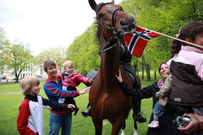 Hest spiser flagg.jpg