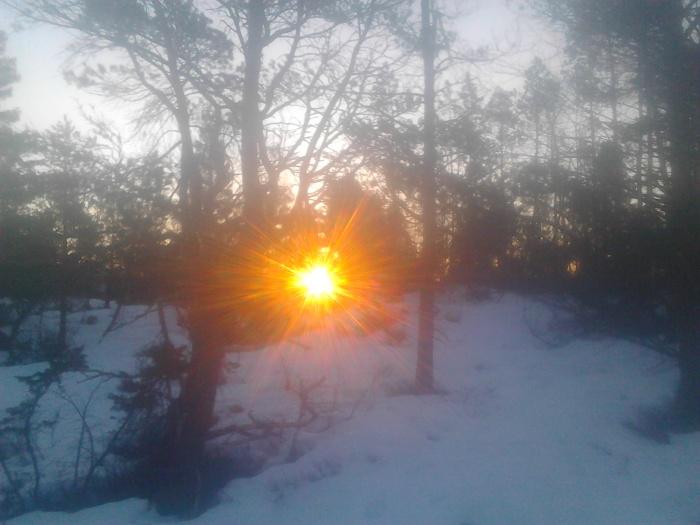 Natt i naturen soloppgang 2