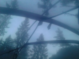Telt i trollskogen (8)