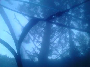 Telt i trollskogen (9)