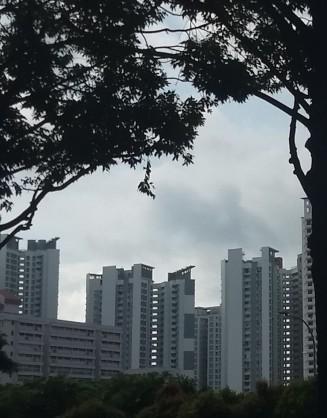 Siste inntrykk Singapore (13)